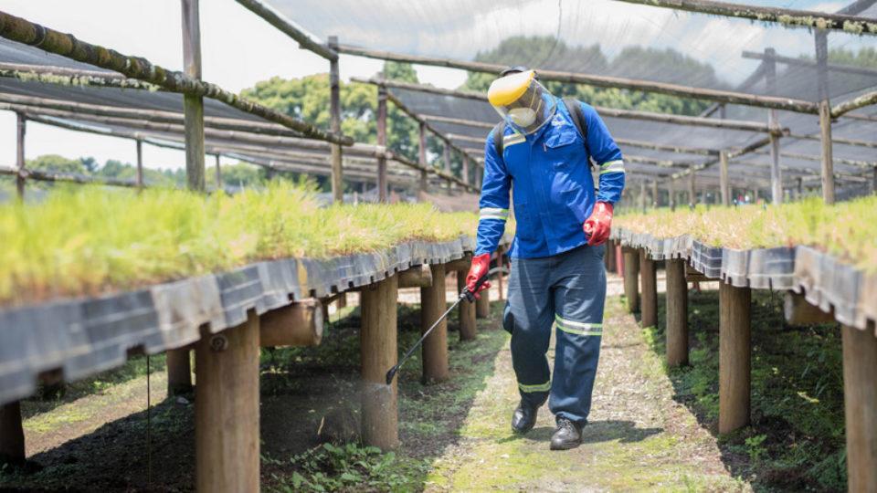 apl nursery herbicide